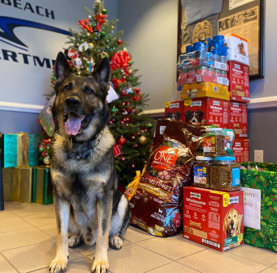 Kilo in front of Christmas Tree